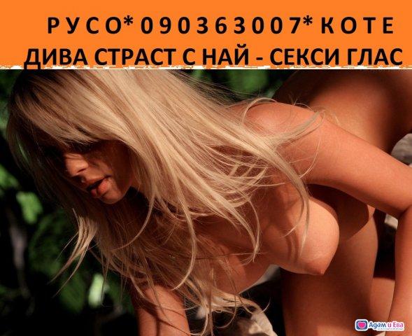 090363007 Р У  С О   К О Т Е ,ПЪЛНА ПРОГРАМА, пантера съм в легл, снимка 2