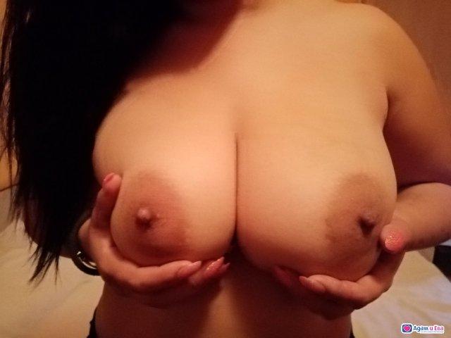 Stefani, снимка 1
